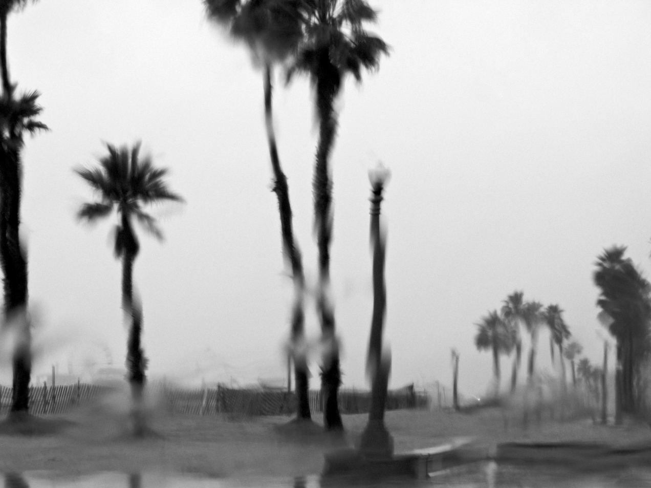 Summer rain in Los Angeles. Photo by Flickr user zimtwookie, used under a Creative Commons license.